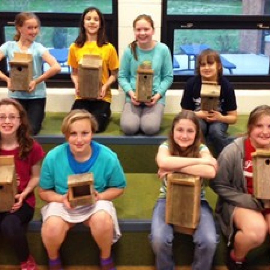 Crestwood Girl Scouts bring new life to outdoor learning area