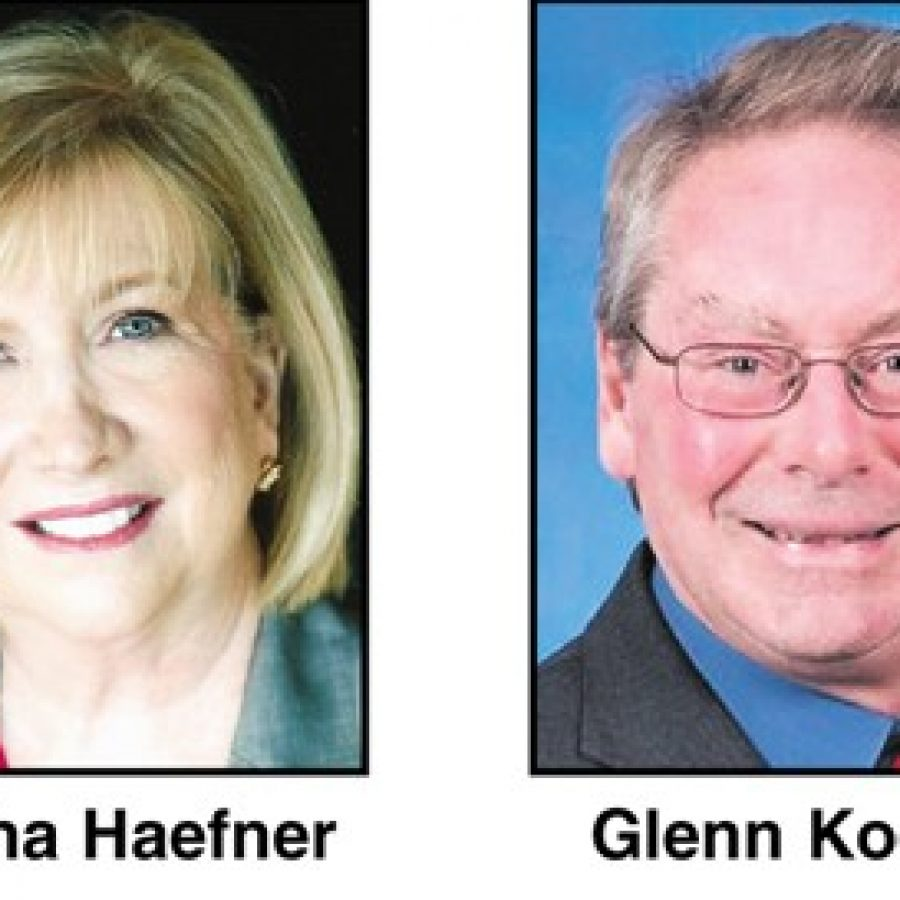 Local candidates seeking seats in House, Senate meet at forum