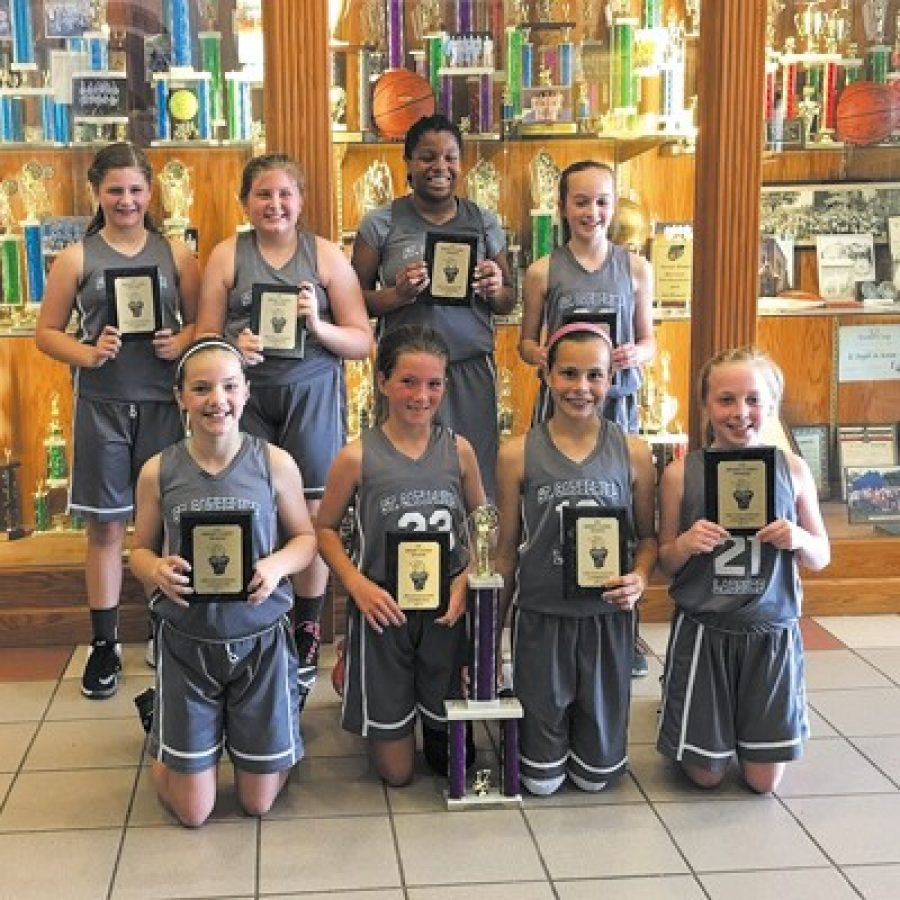 St. Catherine Laboure teams win titles