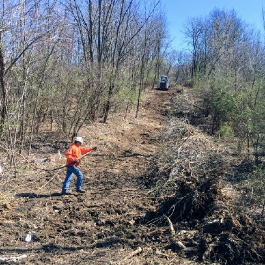A worker clears away brush at the strip of land at the intersection of Telegraph and Erb that will serve as the construction entrance for a \$5 million trail at Cliff Cave Park.