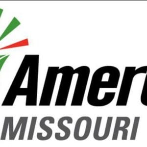 Ameren to host open house Wednesday highlighting 'Metro South Reliability Project'