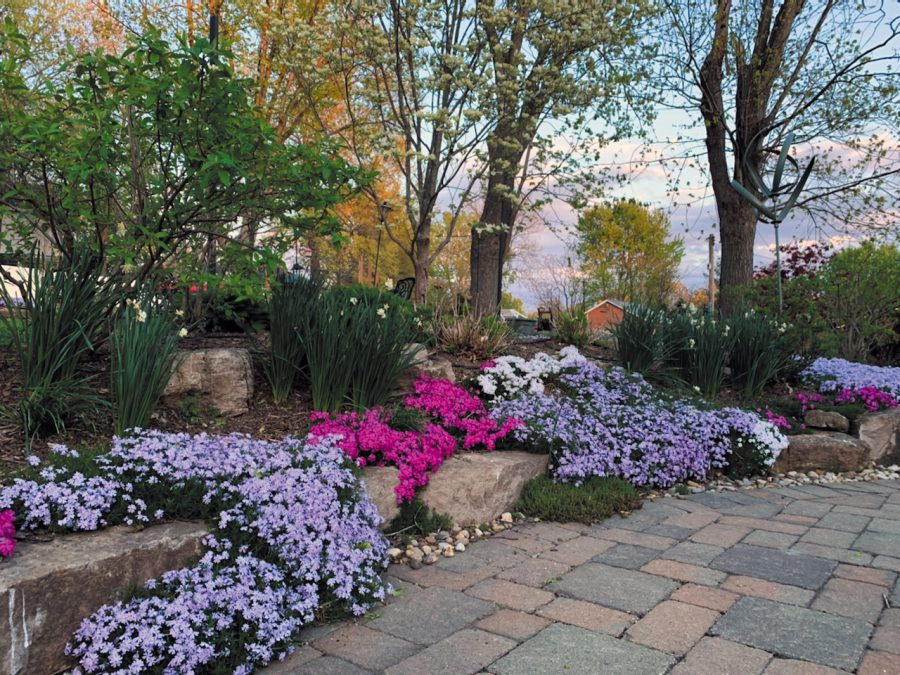 PHOTOS: Call Newspapers readers show off their beautiful gardens