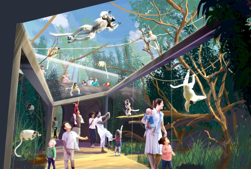 saint+louis+zoo+primate+canopy+2