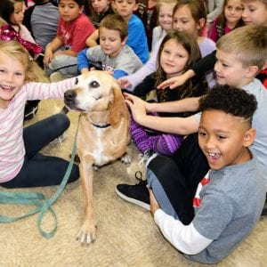 Marshall the Miracle Dog comes to south county