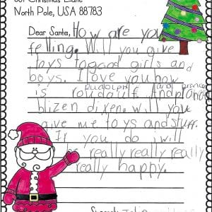 Dressel Elementary second-graders tell Santa what they want this year