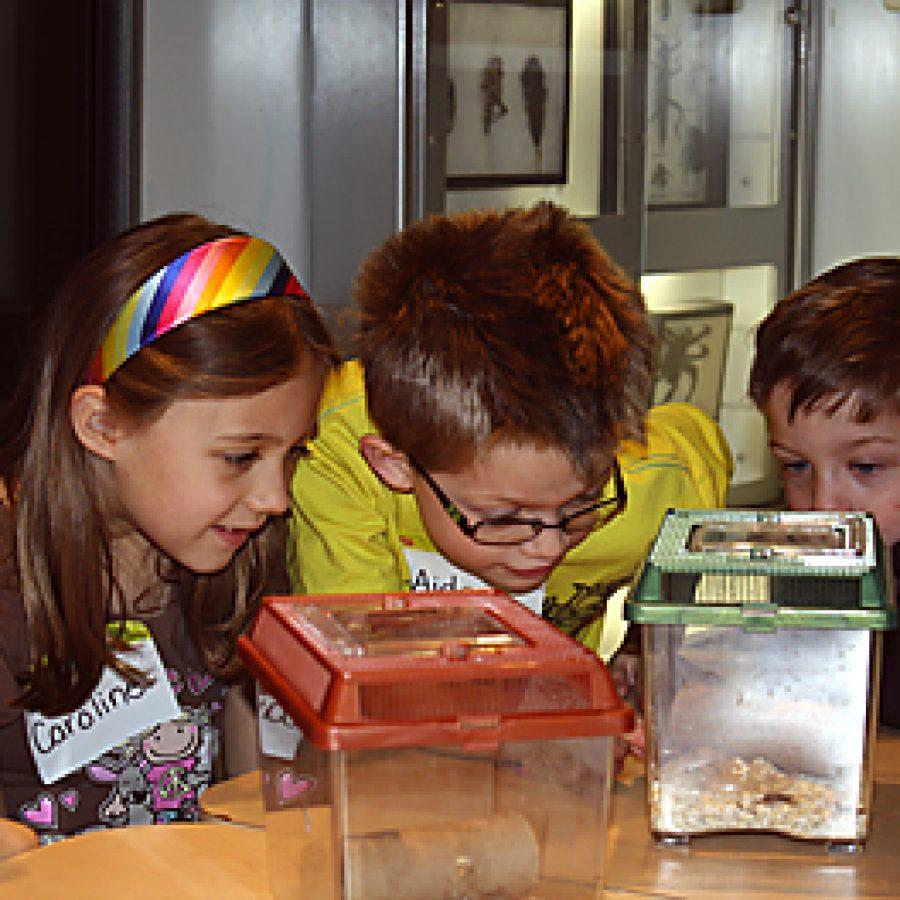 Sappington students explore science