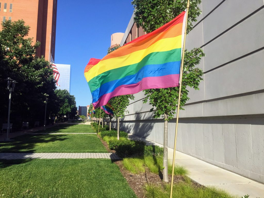 Rainbow flags lined the walkway between the county Government Center in Clayton and the courthouse in June. Photo by Gloria Lloyd.