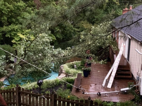A tree fell on a pool in St. Louis County in storm damage Monday, Aug. 10, 2020.