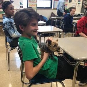 Puppies bring English class to life