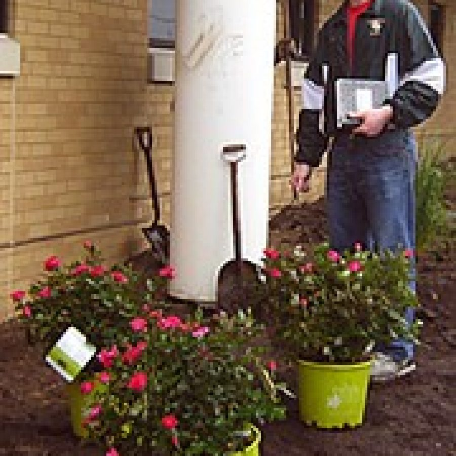 Eagle Scout's project blooms at Kennerly