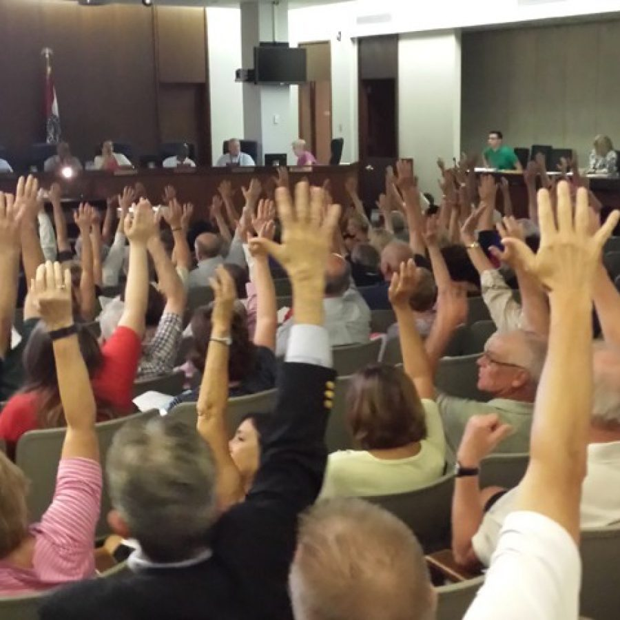 The view of the hands raised against the apartment complex at Bauer and Tesson Ferry from the back of the crowd, courtesy of former Mehlville Board of Education member Lori Trakas.