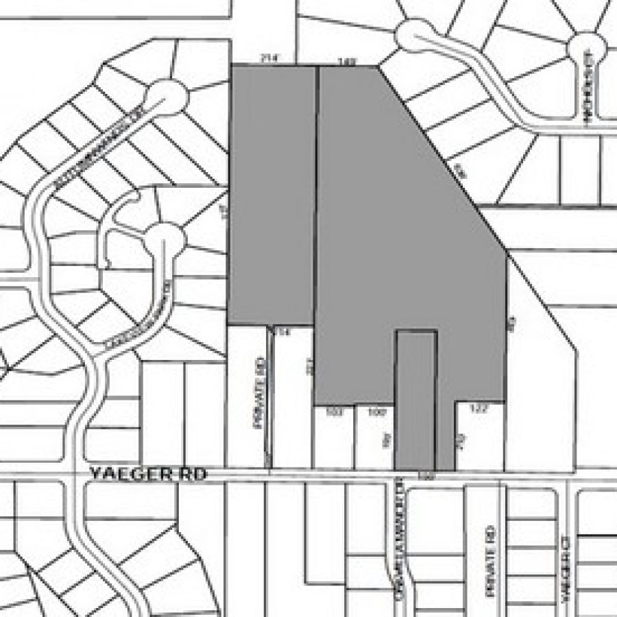Above, a view of the Basler Tree Farm property, as outlined in county zoning documents. (