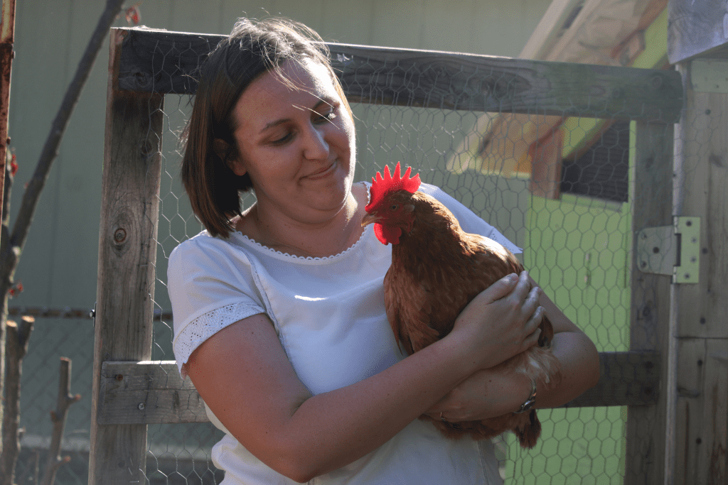 Crestwood+OKs+keeping+nine+chickens