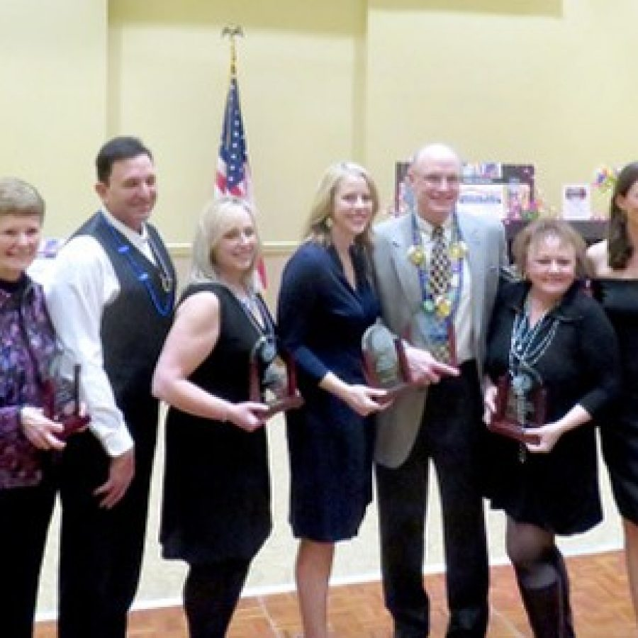 The 2016 recipients of the Crestwood-Sunset Hills Chamber awards line up after accepting their honors at the chamber's Feb. 18 gala. Pictured from left are: Sarah Greenwald, Nancy Benson, Jay and Susan Trevisano, Dr. Holly Ellis, Randall Higgins, Ward 1 Alderman Dee Baebler on behalf of Mellow Mushroom, Christine Cipolla and Midge Krueger.