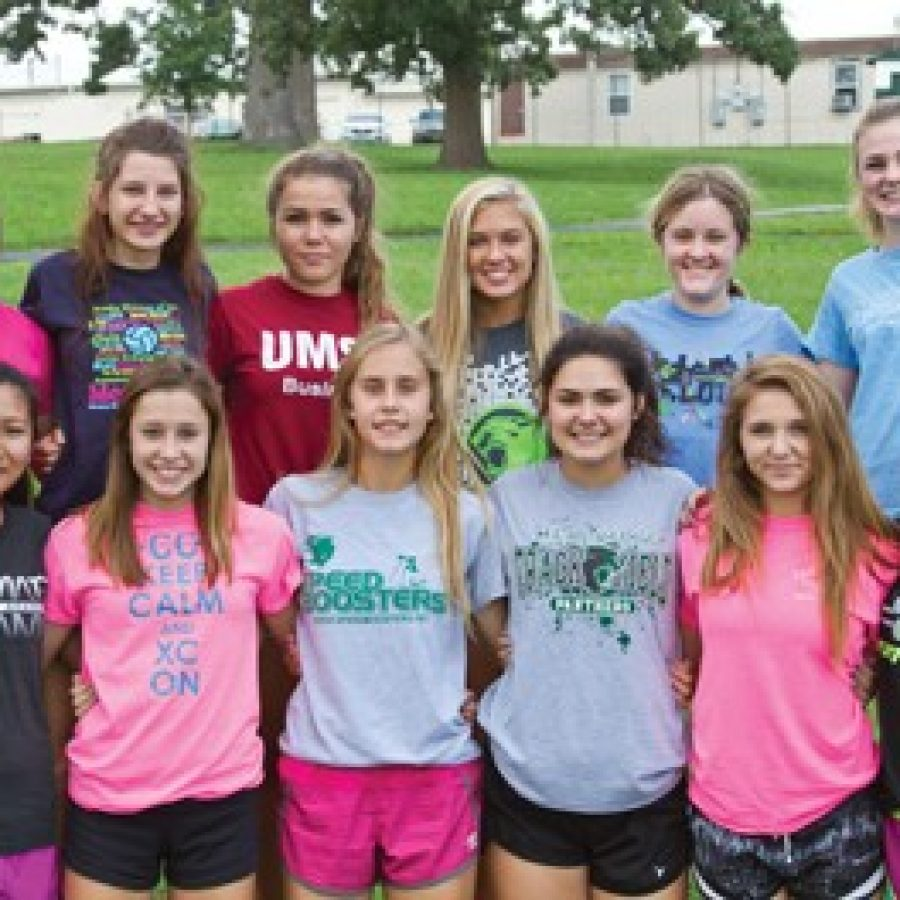 Under second-year head coach Mark Ehlen, the Mehlville High School girls' cross country team is hoping to compete for a district title in 2014.