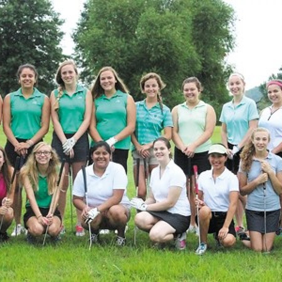 Lindbergh High head golf coach Mike Tyler says the group dynamic of his 2015 squad 'is really nice.'