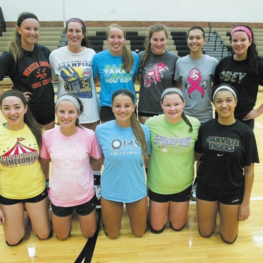 New Oakville High head coach Jessica Betz says her volleyball squad features a mix of experienced and inexperienced players for the 2015 season.