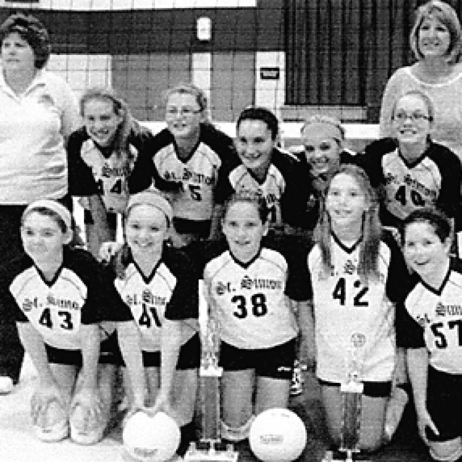 Girls earn district volleyball title