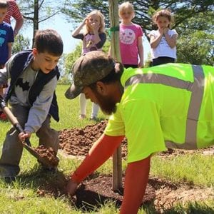 Crestwood to give away tree seedlings