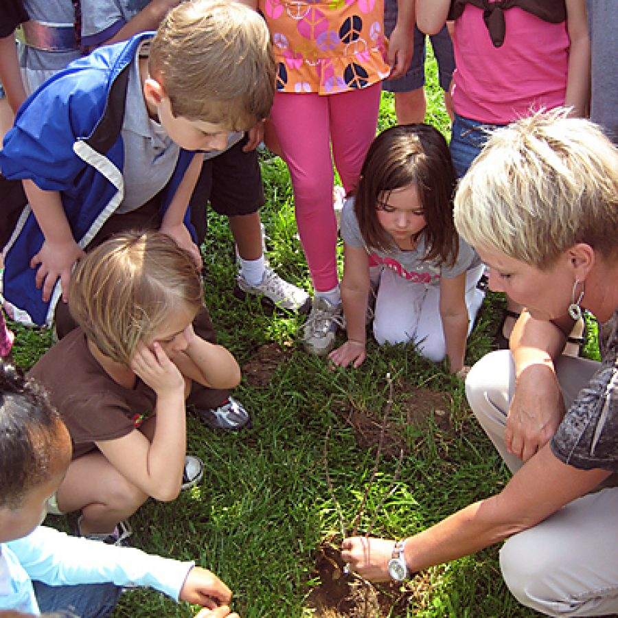 Wohlwend Elementary School kindergarten teacher Ellen Geders and her students, along with the first grade students in Shannon Dechau's class, planted seedlings on the school's campus on April 19. The seedlings, which were donated by Schneider Electric, were planted near the kindergarten playground with the hopes of providing shade for future Wohlwend kindergarteners.