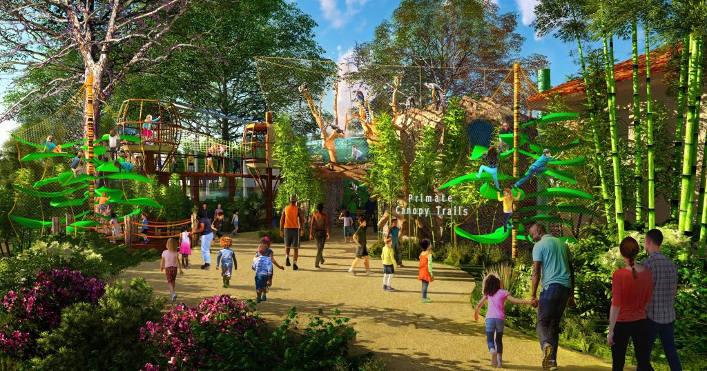 The Primate Canopy Trails, above, will open in 2021. The new element will allow visitors to venture into the canopies to explore the animals' new homes. Artistic rendering courtesy of the Saint Louis Zoo.